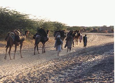 pakistan tourism essay Tourism in pakistan outline (1) introduction (2) tourism in khyber pakhtunkhwah (3) tourism in punjab (4) tourism in sindh (5) tourism in punjab.