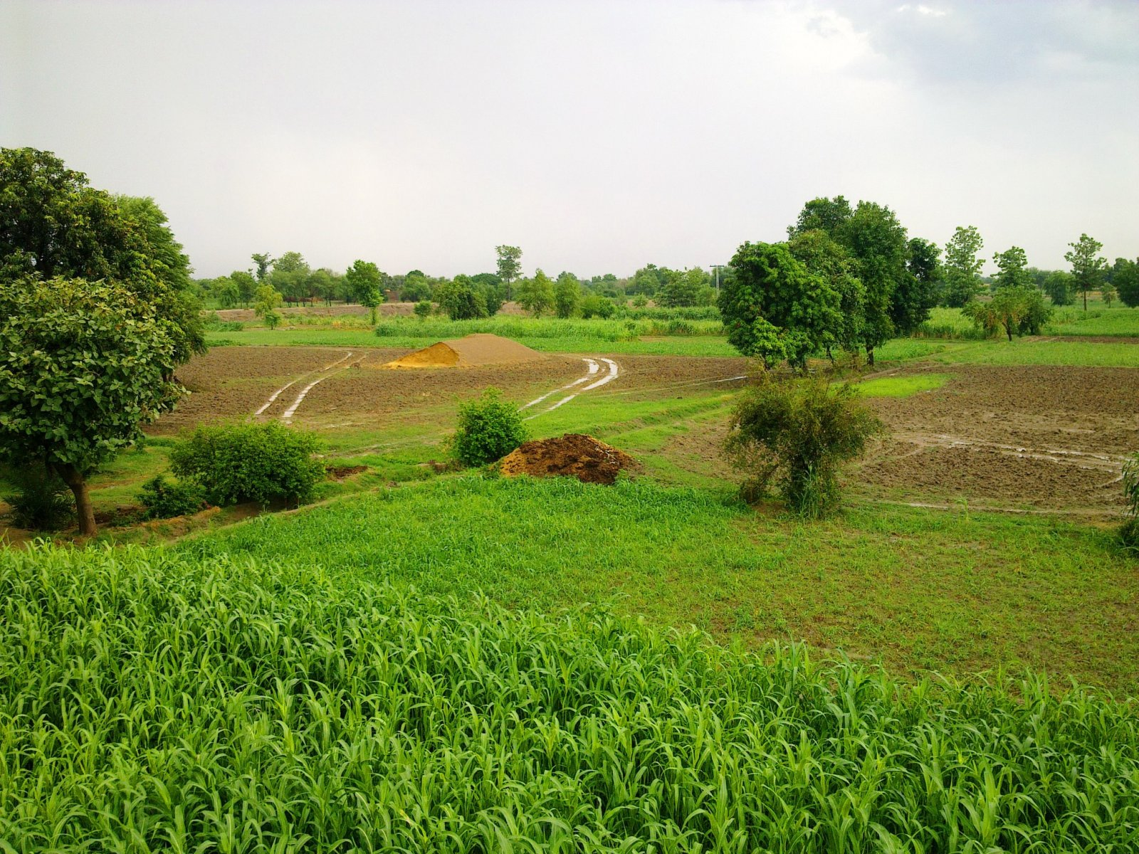 https://wondersofpakistan.files.wordpress.com/2012/10/villages-of-punjab-pakistan-24.jpg