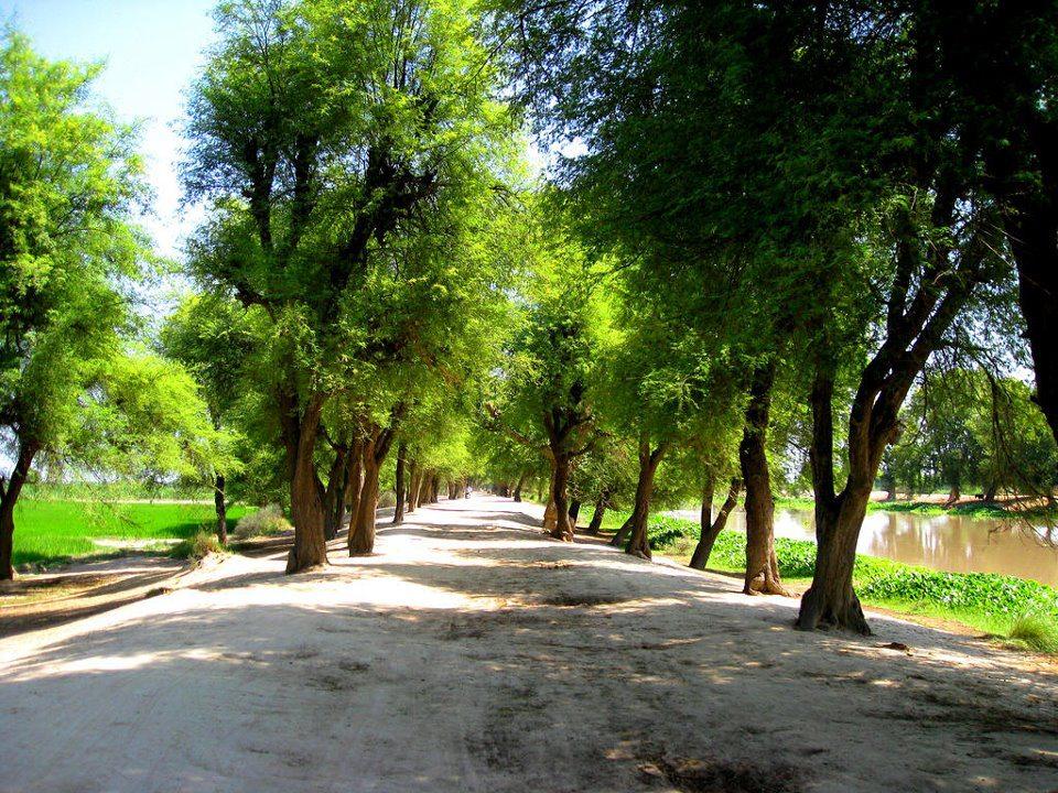 Colors of Punjab, Rural Pakistan [3 of 4] – Wonders of Pakistan