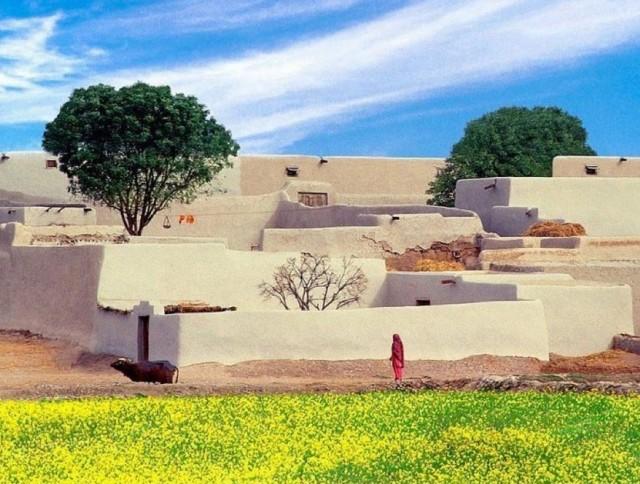 A-typical-Pakistani-Village
